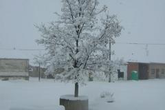 Calle Nevada - 26/02/2006